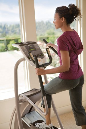 Precor 5.33 Cross Trainer